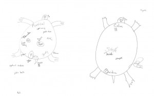Two annotated drawings of Turtle Island by Mary (l) and Christine (r) showing names and notes