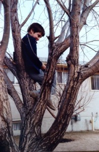 Gavin Paul reading in a tree