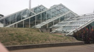 Here's the really big greenhouse
