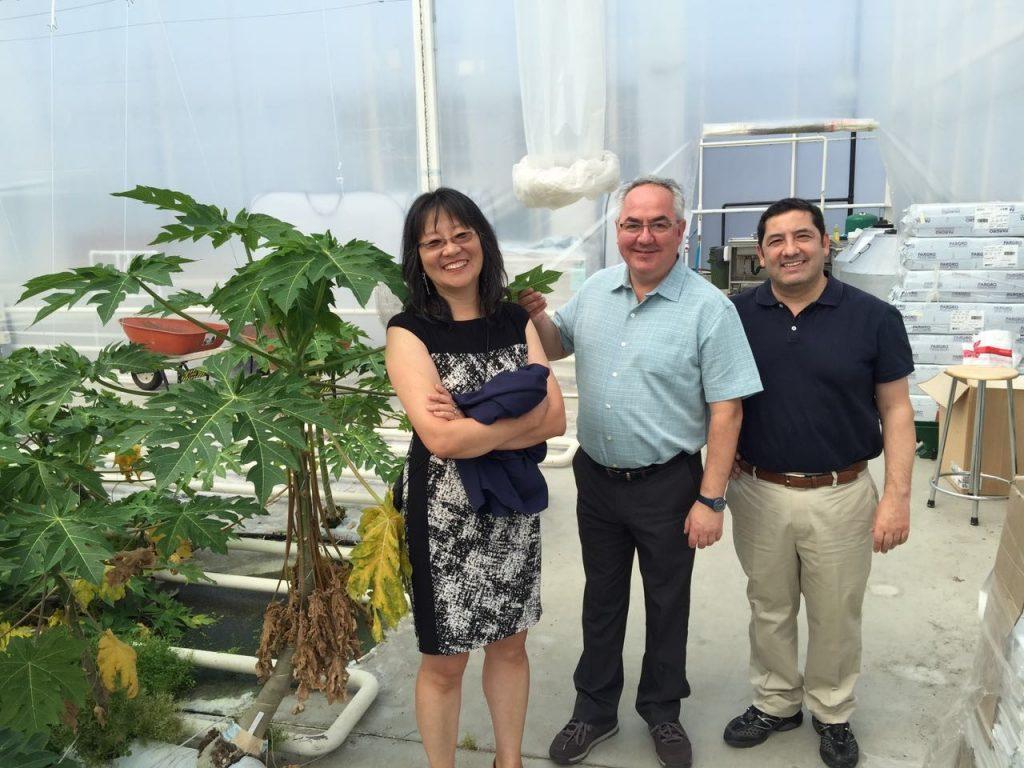 Drs Lee, Yanez, Carcamo