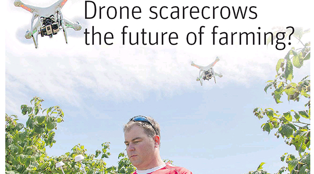 Blog - drone scarecrows