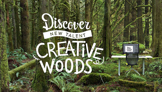 Creative Woods