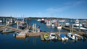 A wharf in Nanaimo, BC with multiple boats docked