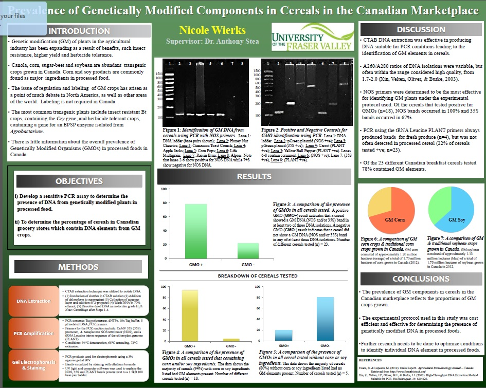 Creating Undergraduate Research Posters That Work  Practically
