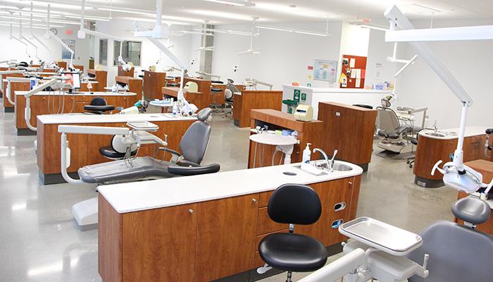 dental-clinic-wpbody
