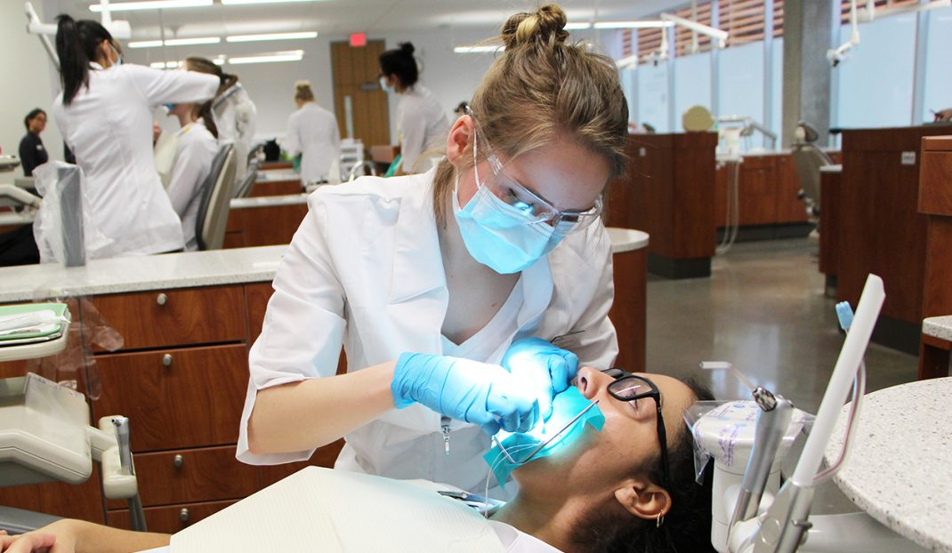 dental-accred-wp2