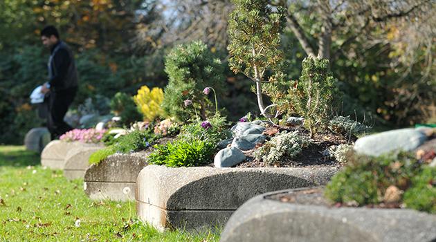blog - CEP planters 07
