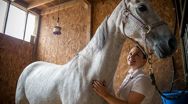 National equestrian champion has unbridled passion for design