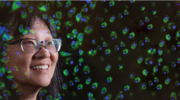 Fishy business: Dr. Lucy Lee raising fish cell lines and next-gen researchers
