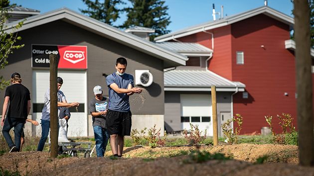 Agriculture practicums give students a fresh lens on their career aspirations